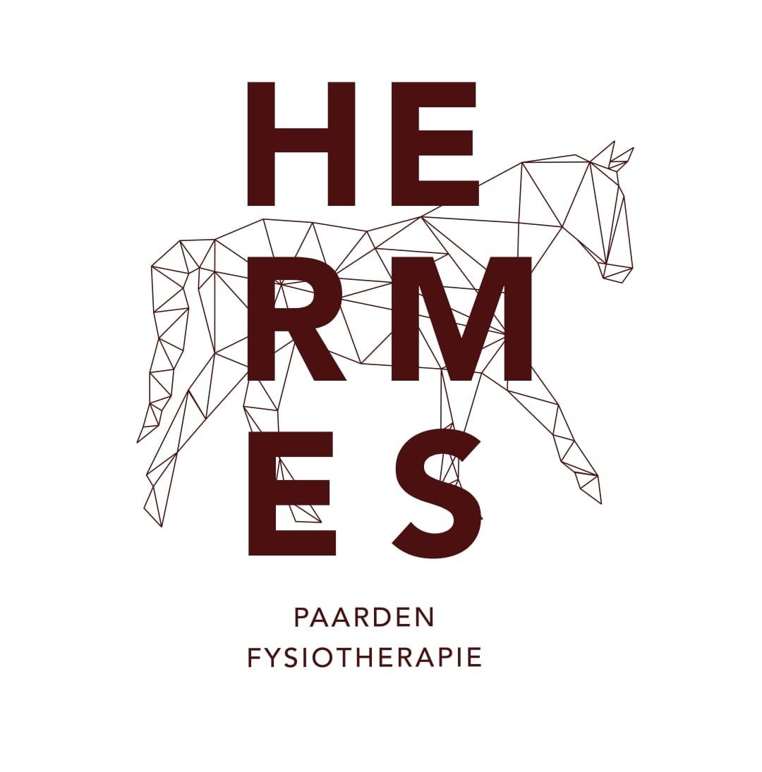 Hermes paardenfysiotherapie